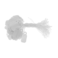 Plastic String Tags White (Pack of 100)
