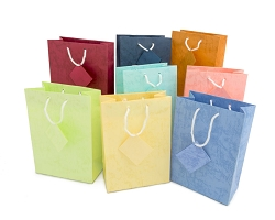 Tote Bag 4x6 Assorted Pastel (Pack of 10)